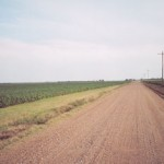 Dirt roads and cotton fields